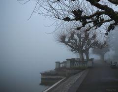 Nebel in der Konstanzer Seestrasse