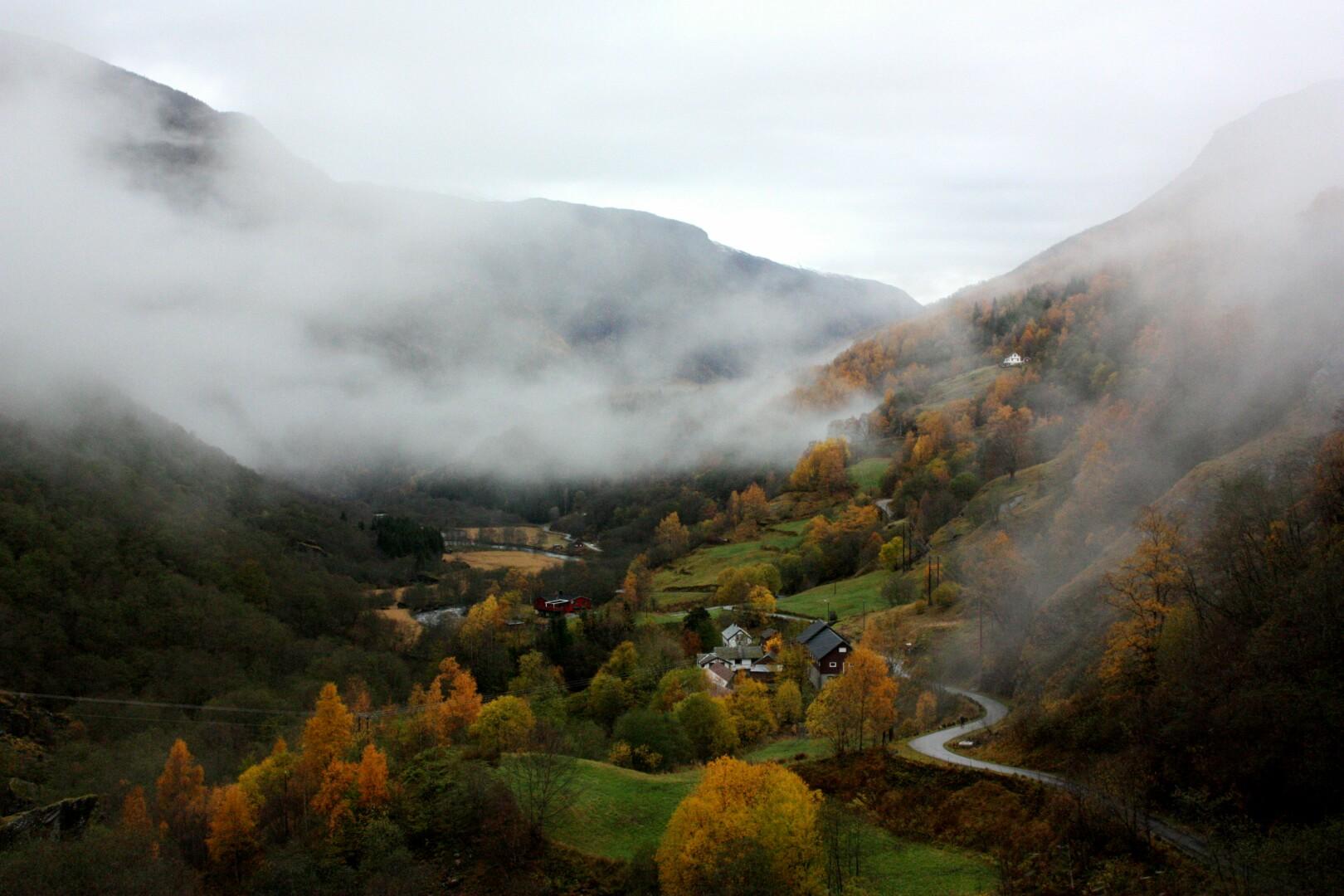 Nebel in Norwegen
