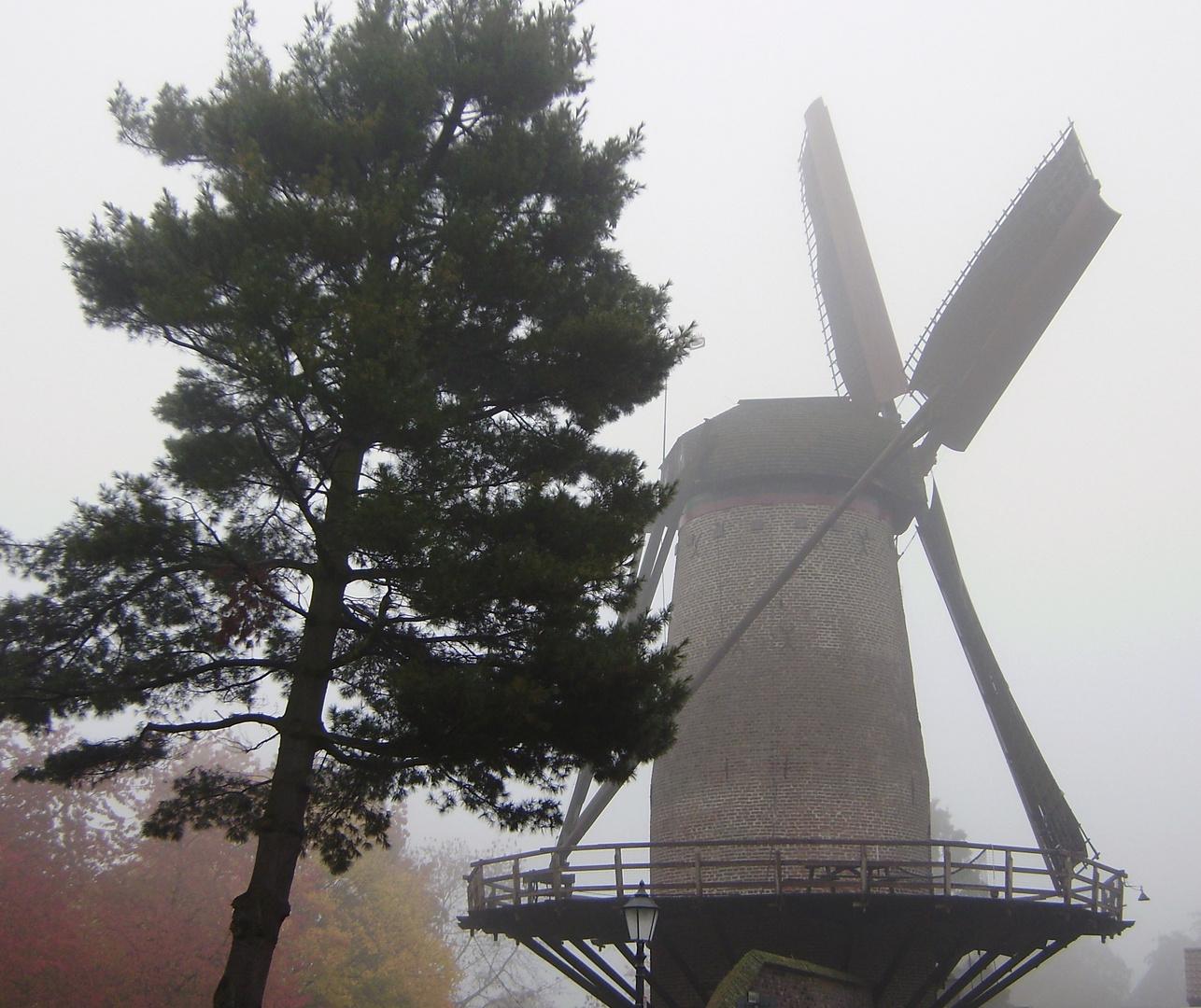 Nebel in Xanten
