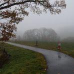 Nebel, mit und ohne Kontrast
