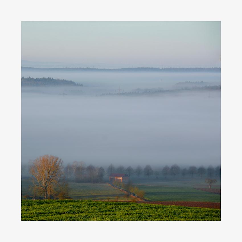 Nebel - Morgen...
