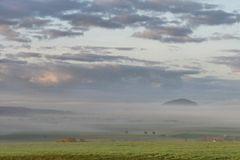 Nebel-Morgen...