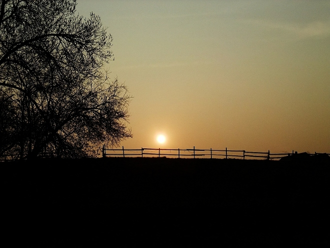 Nebel-Sonne über'm Zaun...
