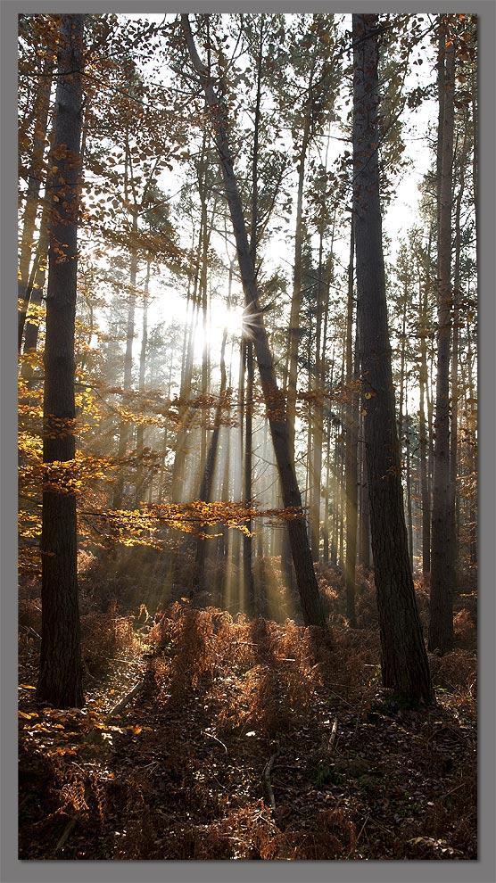 Nebel, Sonne und kein Ende