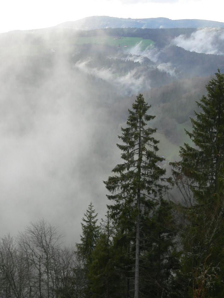 ...Nebel steiget