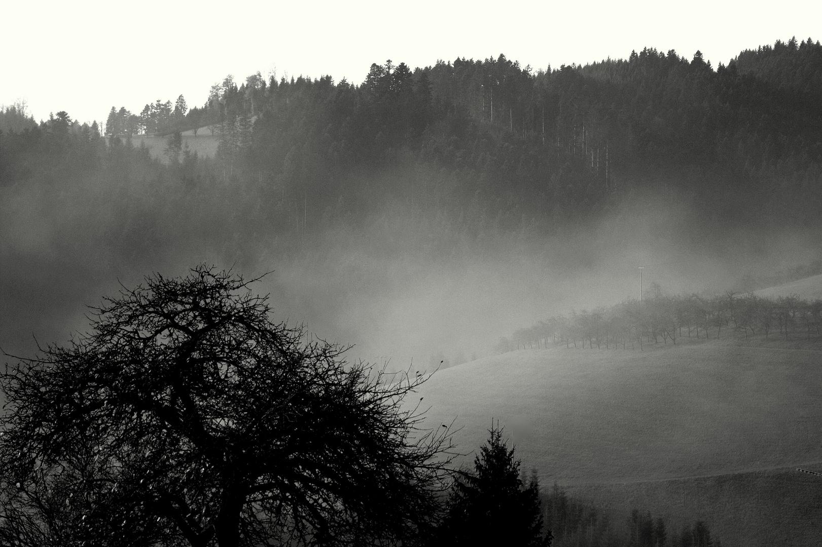 Nebel steigt auf...