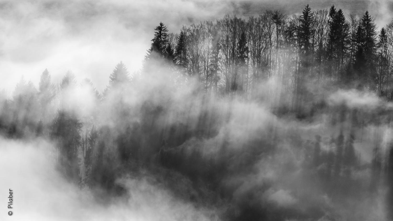Nebel Symphonie 1. Satz
