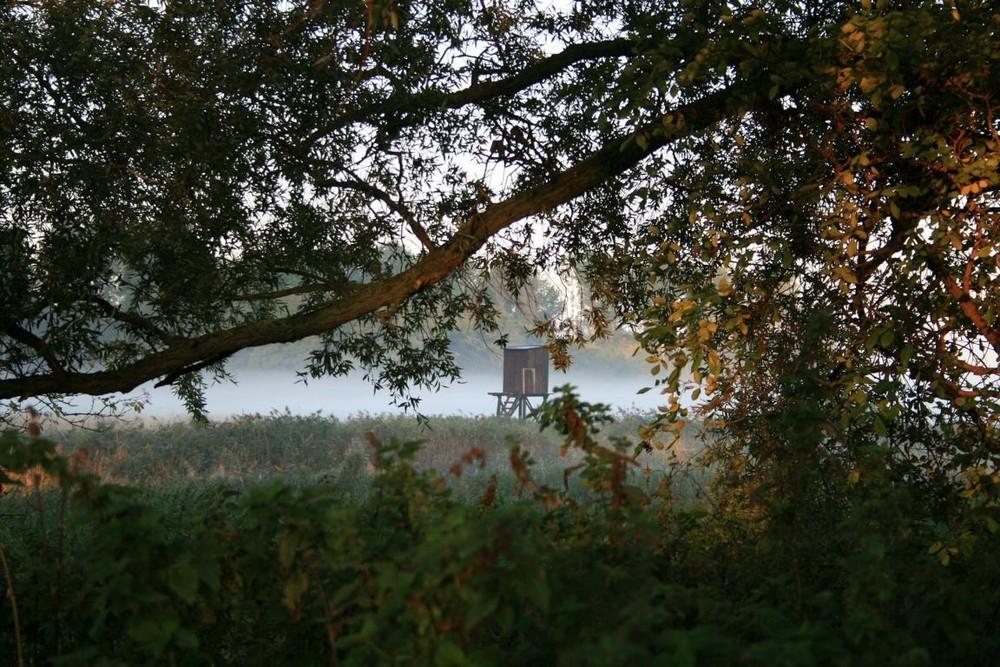 Nebel, Teil 2