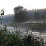 Nebel über dem Eisvogelrevier