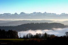 Nebel über dem Wohlensee