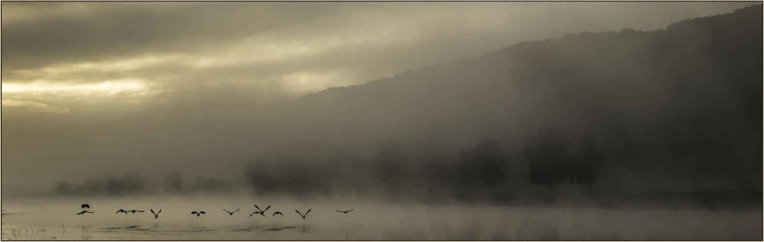 Nebel über denm Fluß
