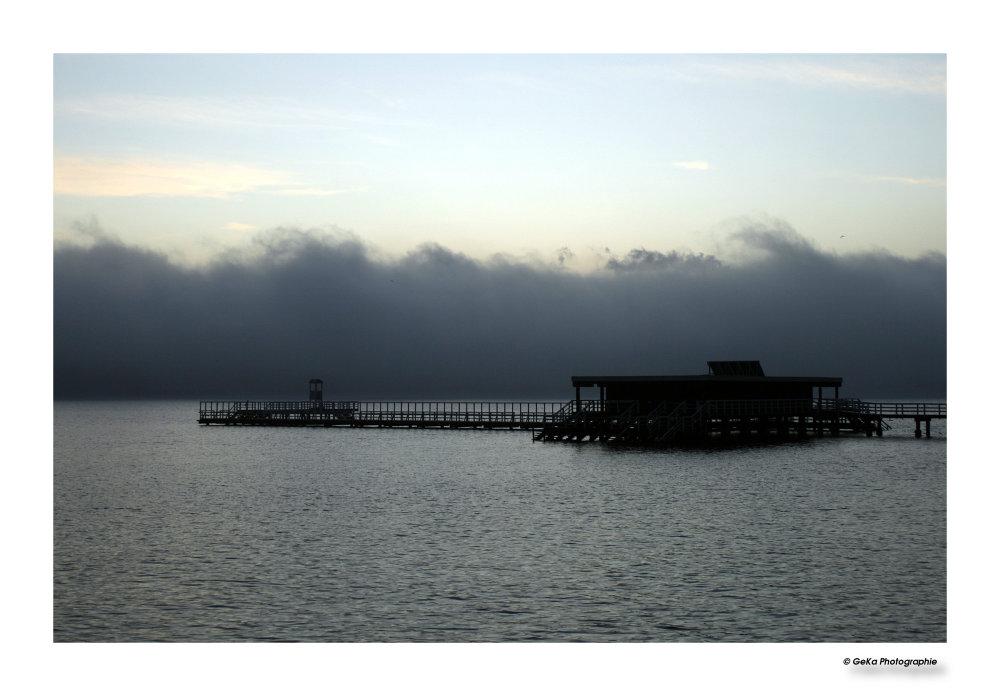 Nebel über der Förde