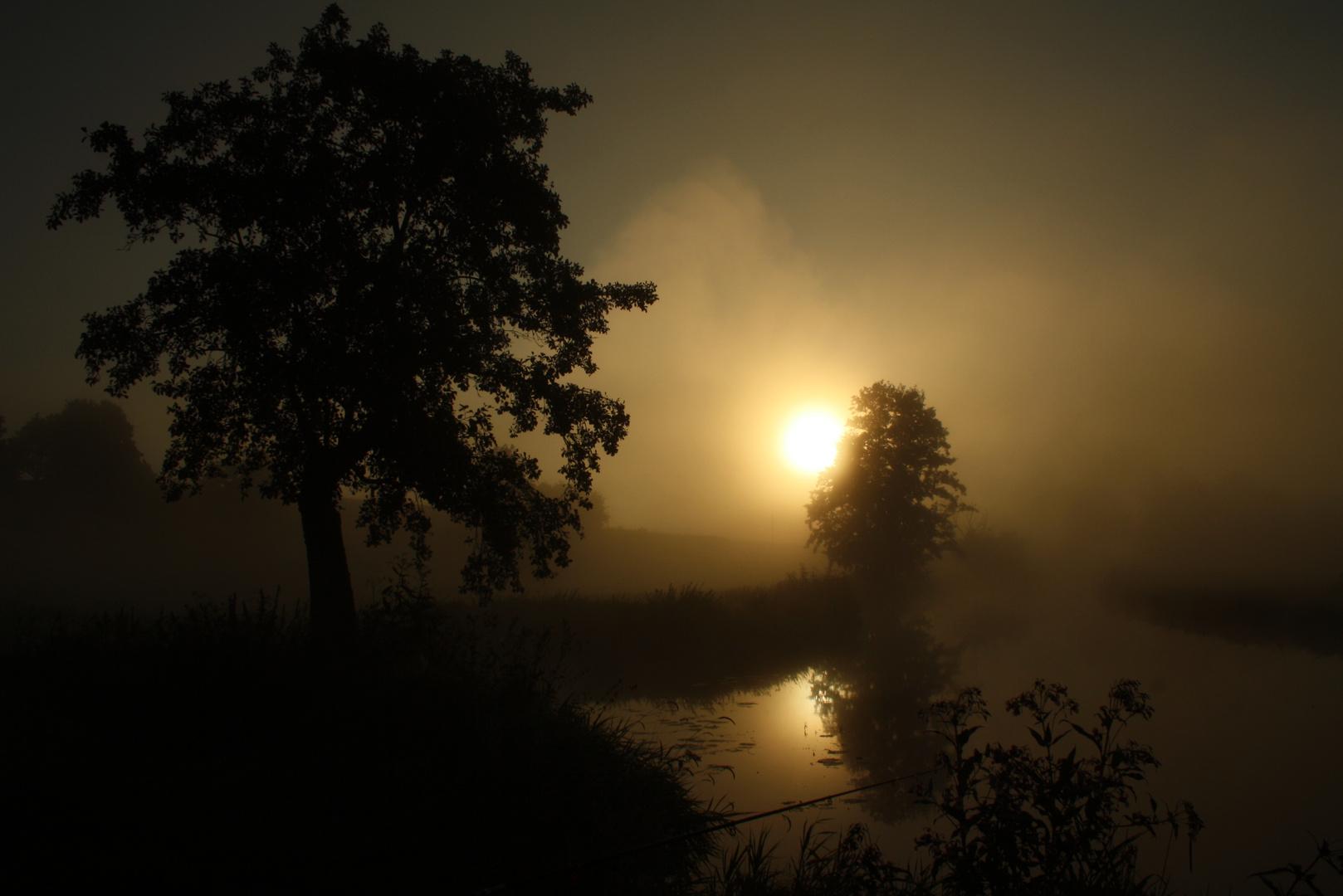 Nebel über der Schwarzach