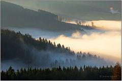 Nebel über Wittgenstein