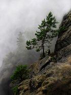 Nebel und Fels