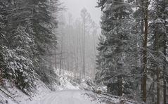 Nebel und Schneegestöber