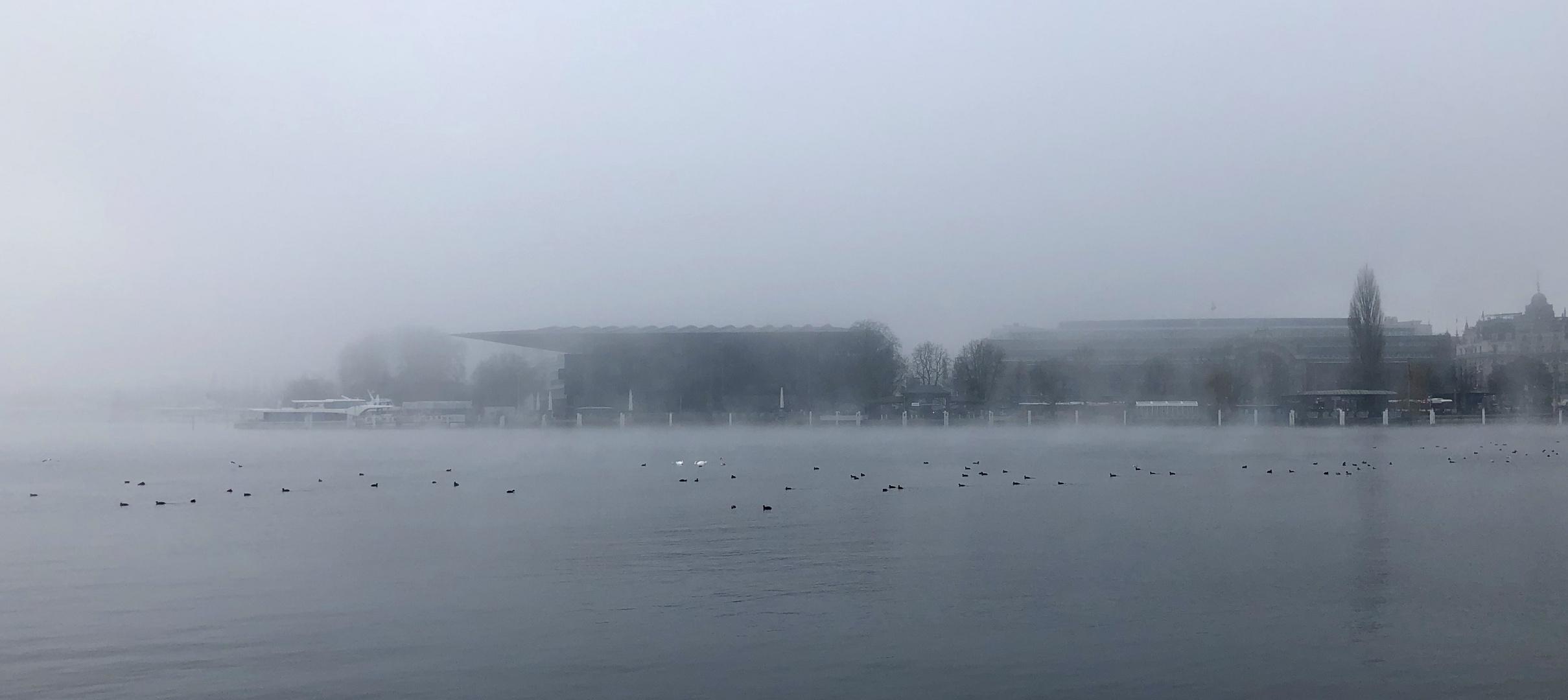Nebel verwischt......