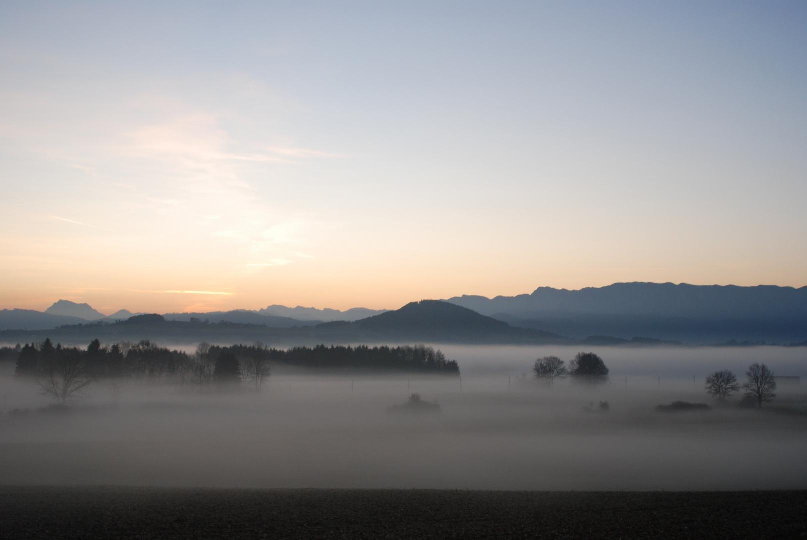 Nebel vor dem Buchberg