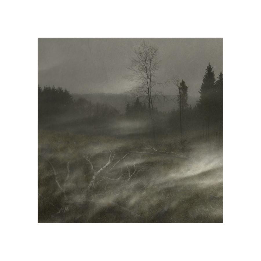 Nebel zieht über das Land