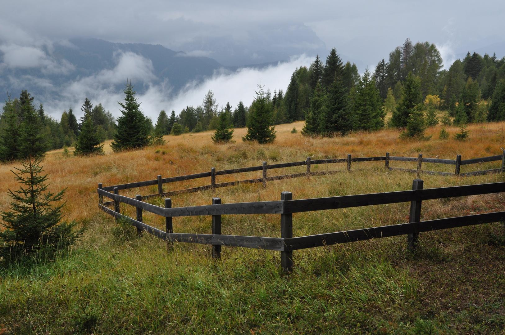 Nebel zieht vom Tal herauf