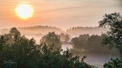 Nebelbänke