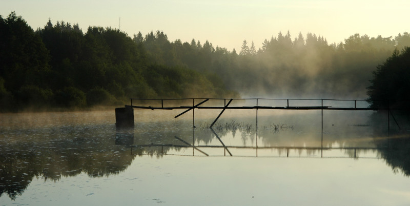 Nebelbrücke....