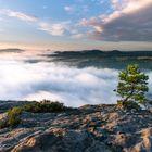 Nebelfluss