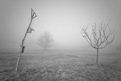 Nebelgeschichten 2