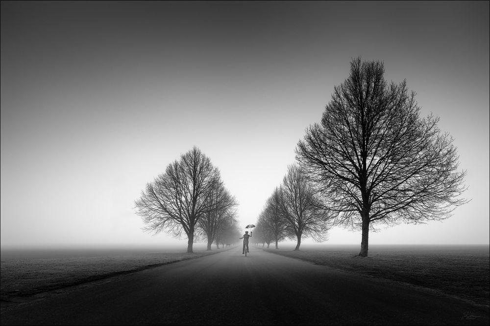 Nebelgeschichten...