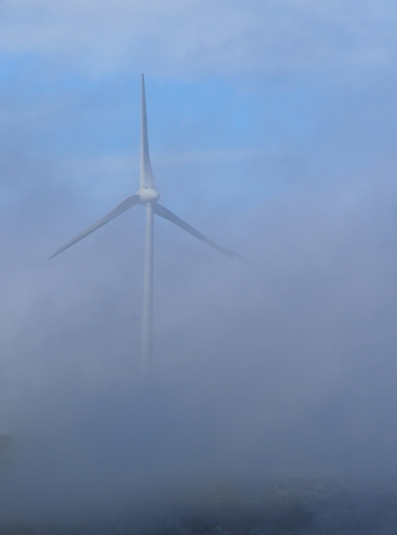 Nebelkraft