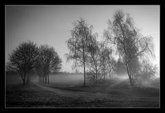 Nebelkreuzung