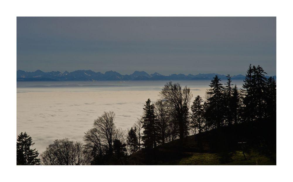 Nebelmeer im Tal