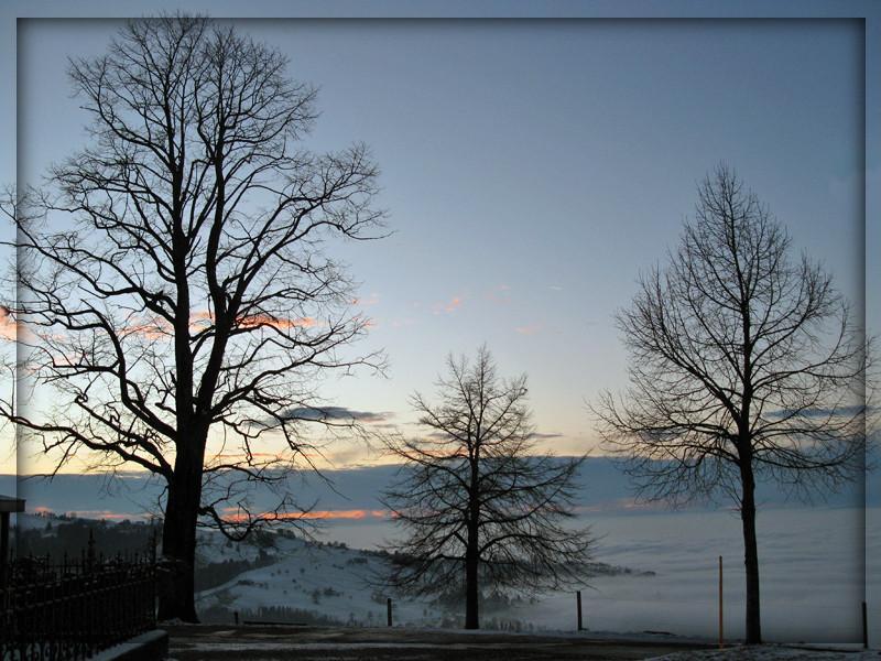 Nebelmeer in der Dämmerung