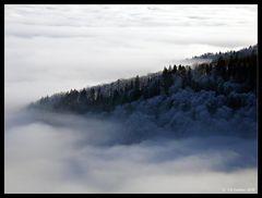 Nebelmeer über dem Jura
