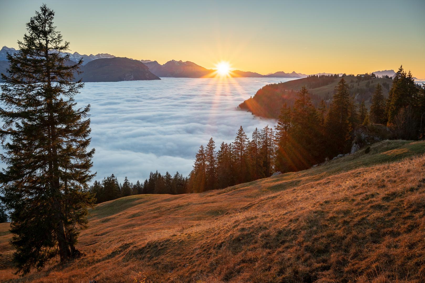 Nebelmeer über der Schweiz