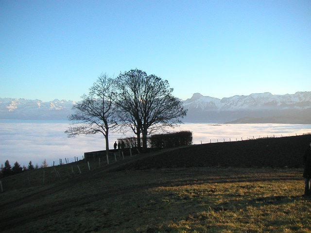 Nebelmeer vom Längenberg