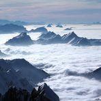 Nebelmeer vom Säntis