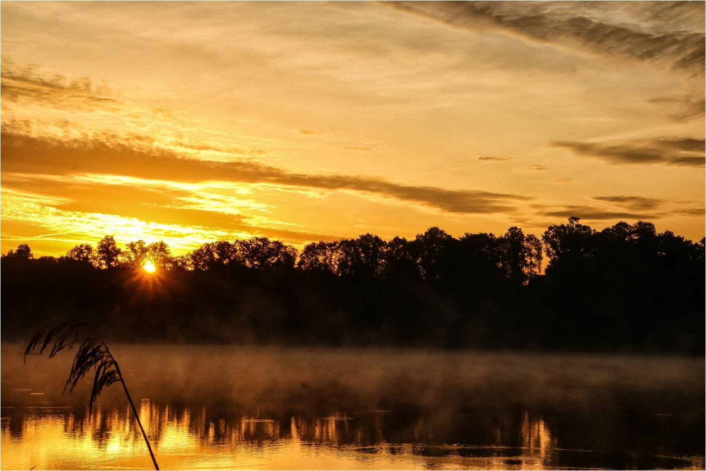 Nebelmorgen (3)