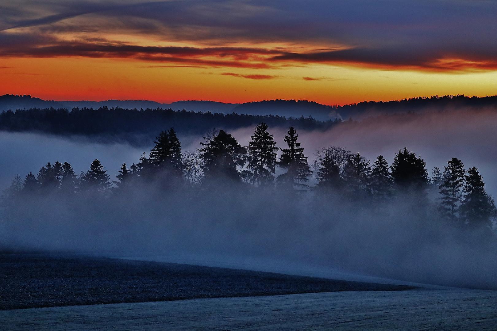 Nebelmorgen- Trilogie/ 1