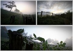 Nebelmorgen Variante