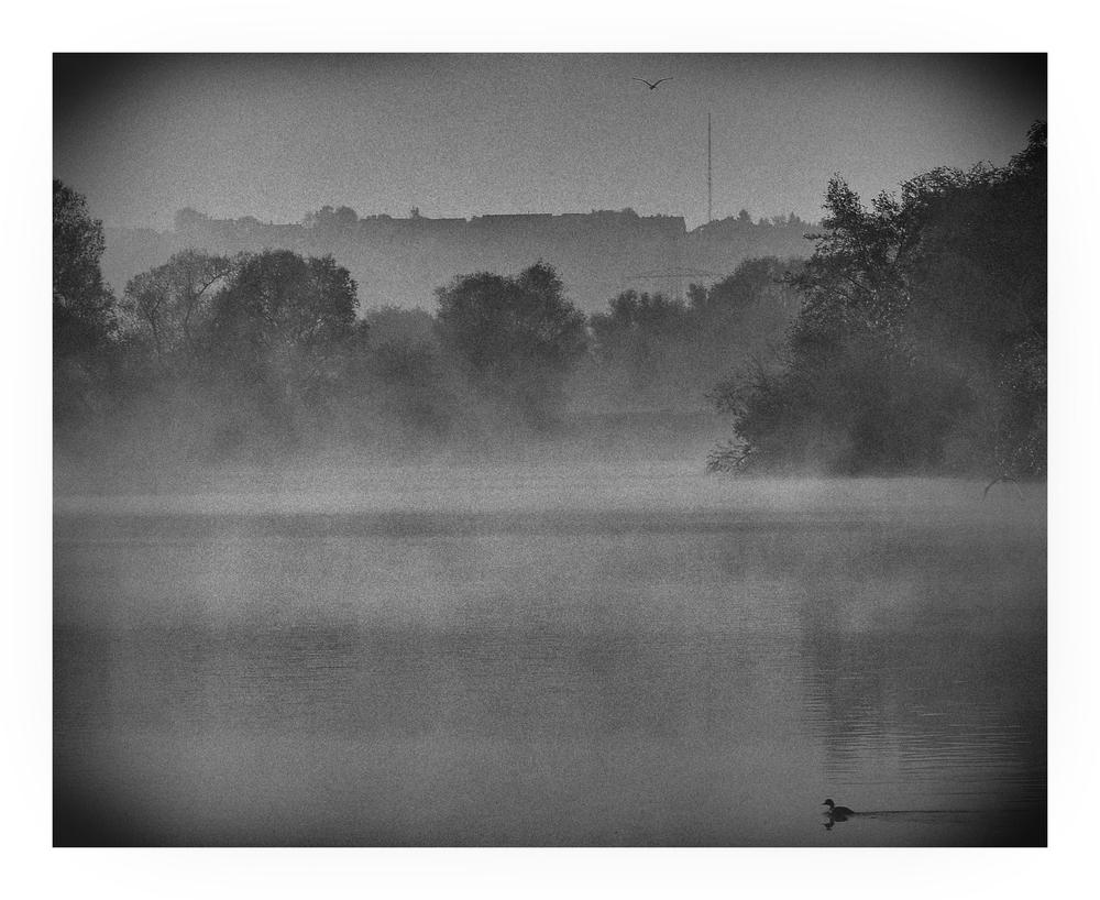 Nebelmorgen - Wandlung