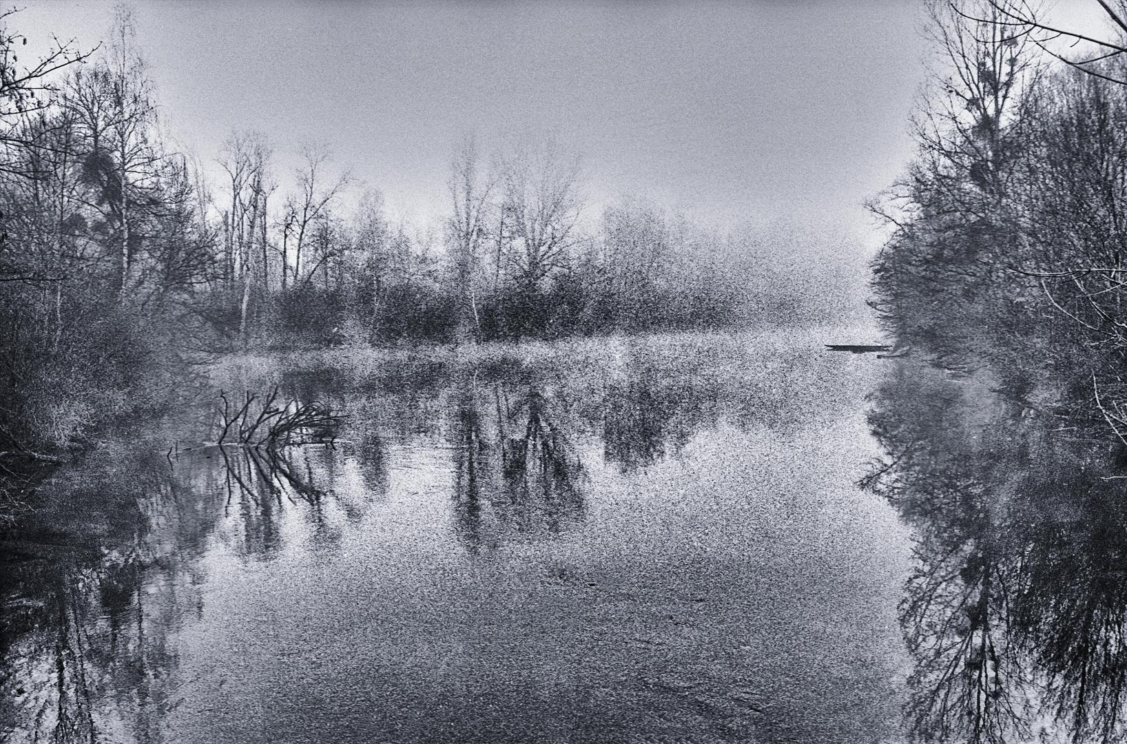 Nebelreich