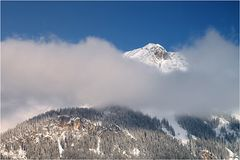 Nebelschal