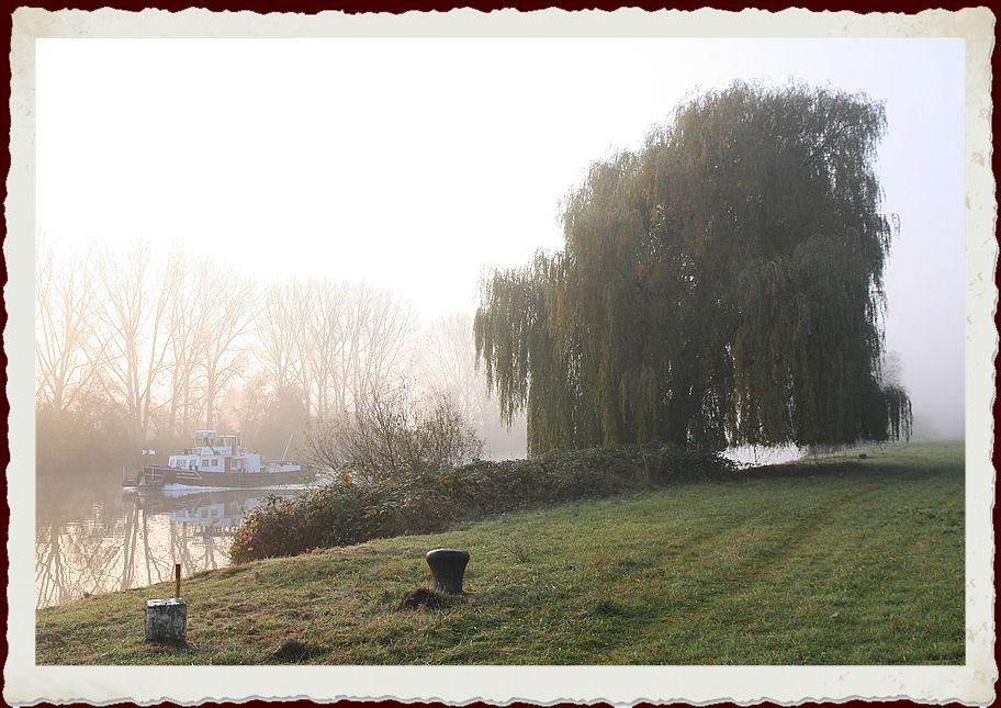 Nebelschleier am Fluß