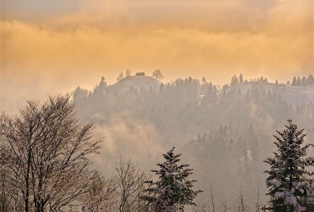 Nebelschwaden....