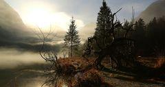 Nebelschwaden am Königssee