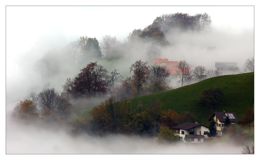 Nebelschwaden ...
