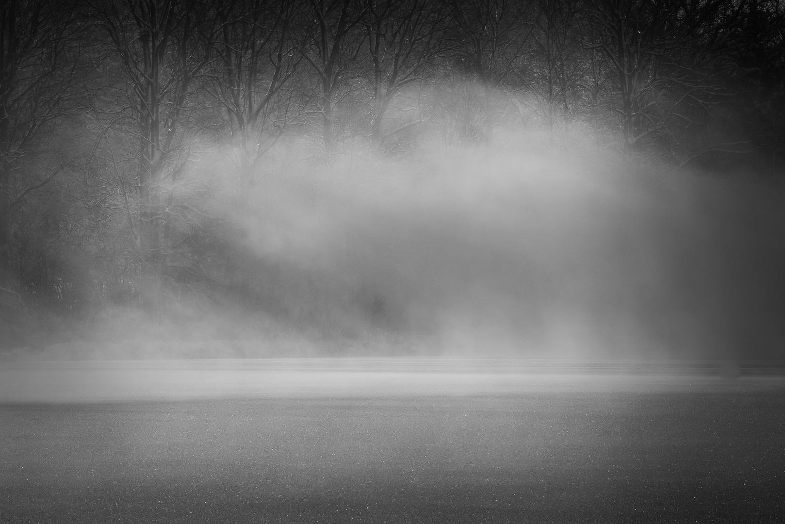 Nebelschwaden über dem Eis