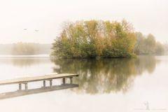 Nebelschwaden über dem See