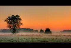 Nebelslandschaft am Morgen-2